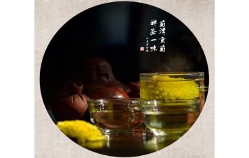 郦邑贡菊:内乡县新兴的茶产业