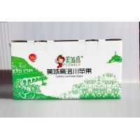 洛川美域高苹果80#规格16枚礼盒装