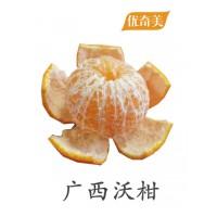 广西沃柑 8斤 应季鲜果 多汁爽甜 广西原产地武鸣县出产