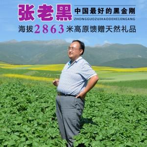 脱毒新鲜黑土豆紫土豆种子黑金刚土豆一级种紫马铃薯非紫薯包邮